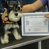 Little Angel Award recipient